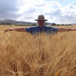 Keith in a wheat field in Northern Israel.
